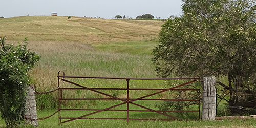 Farm Gate with Redgum Posts, Lot 50_Malone