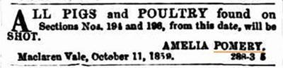 Public Notice, Pomery 1859_Malone
