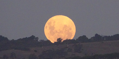 Moonrise Easter Saturday 2015 (2) _Malone
