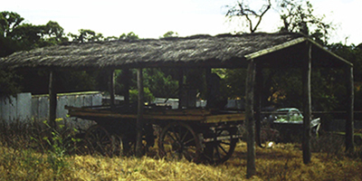 Brush Covered Farm Shelter, Willunga_Malone